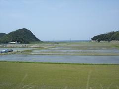 DSC05616 (komatsuma) Tags: 20060505 小浜線