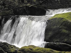 8772ex  P900 Flowing on..... (jjjj56cp) Tags: summer green river flow stream hiking rocky falls boulders p900 flowing cascade smokies gsm fallingwater tremont rushing greatsmokymountainsnationalpark trailside streamside jennypansing
