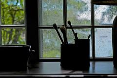 Summer Shower (smilla4) Tags: shadow stilllife rain bokeh maine silhouettes waterdrops mainecottage