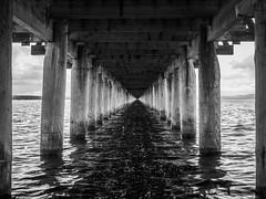 The Pier (Jens Haggren) Tags: olympus em1 pier water lake siljan bw mono rättvik dalarna sweden