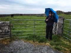 Misty Grey Morning in Ireland Countryside (Costa Rica Bill) Tags: morning blue ireland misty umbrella grey countryside walkingaround iphoneonly snapseed