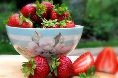 _leckere frchtchen (SpitMcGee) Tags: erdbeeren strawberry rot red schssel bowl lecker yummy frchte friut garten garden spitmcgee