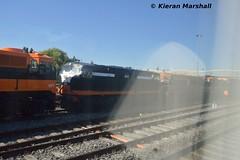 B141 at Inchicore, 19/7/16 (hurricanemk1c) Tags: dublin irish train gm rail railway trains railways 141 irishrail generalmotors inchicore 2016 emd iarnród éireann rpsi iarnródéireann railwaypreservationsocietyofireland b141