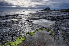 Into the light at Bamburgh (G V Fennell) Tags: bamburghcastle castle clouds lowlight lowangle lowtide morning northumberland reflections rocks sea seascape seaweed sunrise whinsill greatclacton essex uk