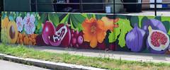 Mural, Watertown, MA (RockN) Tags: mural fruitsandflowers watertown massachusetts newengland
