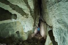 Grotte  de la doline rocheuse du bois de Monthautier - Andelot en Montagne (inedit) (francky25) Tags: grotte de la doline rocheuse du bois monthautier andelot en montagne inedit jura franchecomt