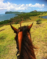 View from Between the ears at Vieux Fort , Saint Lucia (Lonfunguy) Tags: vieuxfort saintlucia caribbean landscape betweentheears viewfrommyhorse horse simpybeautiful