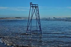 Longlegs ?                 Agadir (DirkVandeVelde Back) Tags: afrika afric afrique noordafrika marocco maroc marokko agadir sea zee strand beach stoel chair long leg plage