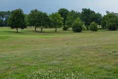 Golf Motzen 008 (Frank Guschmann) Tags: golf motzen frankguschmann fujix20 x20 fujifilm