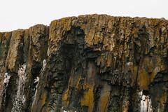 Cliff edge Looking Up (danielfoster437) Tags: randvaneenklif gevaar klip nature degeologie cliffedgeside kliptextuur randeinerklippe cliffjumping spitzbergen geology spitsbergen edgeofacliff klif klippetextur arcticnature kliftekijken natuur landscape landschaft klippenspringen cllifftexture geologie klifkant klippeseite cliffedgelookingup danger adventure natur landschap svalbard klippe klippenrandnachoben avontuur gefahr noordpoolnatuur arktischenatur cliffedge cliff abenteuer