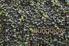 Bungalow (-Photloos-) Tags: stuttgart stuggi bungalow wall facade fassade minimalistic green minimal minimalism wenigeristmehr simplicity keepitsimple canon 6d germany