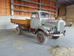 MB LAK 312 (Vehicle Tim) Tags: mercedes mb lkw truck oldtimer pritsche fahrzeug hauber