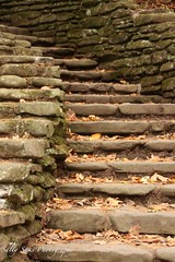 IMG_9239 (Sally Knox Sakshaug) Tags: letchworth state park new york fall autumn october colors leaf leaves orange yellow stone grey gray brown green red beautiful pretty scenic genesee river portagecanyon stonework rock civilianconservationcorps cccc closeup stair stairs staircase wolf creek area small falls delicate simple quiet
