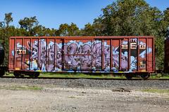 (o texano) Tags: houston texas graffiti trains freights bench benching tio bew