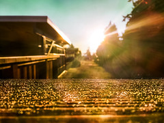 It's a new day (Natalia Medd) Tags: sunrise morning new day sun street landscape depth field blur bokeh abstract sunny bright golden serene serenity iphone sky
