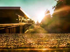 It's a new day (Natalia Medd) Tags: sunrise morning new day sun street landscape depth field blur bokeh abstract sunny bright golden serene serenity iphone sky