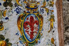fleur-de-lis (pucek) Tags: flowerdeluce fleurdelis lily heraldic sel30m35 italy