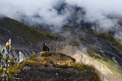 Feeling the nature (hma_alam) Tags: annapurna himalaya