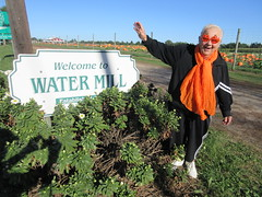Theresa Irene Wolowski waving hello from the Welcome to Water Mill Established 1644 sign in Southampton, Long Island, New York (RYANISLAND) Tags: pumpkin pumpkins pumpkinpicking pumpkinpatch pumpkinfield halloweenpumpkin halloweenpumpkins hankspumpkintown pumpkintown pumpkinfarm happyhalloween halloween thesamhainfestival samhainfestival samhain blessedsamhain fall autumn fallfoliage harvest happythanksgiving thanksgiving thanksgivingpumpkin pumpkinpie october october31 october31st 16 2016 ny nyc nys nyny newyork newyorkcity newyorkstate newyorknewyork southfork suffolk suffolkcounty li longisland winnecomac independentlongisland thehamptons hamptons southampton watermill watermillny watermillnewyork southamptonny southamptonnewyork cornmaze family familyfun fun hayride farm farmstand eatfresh fruits freshfruit vegetable vegetables freshvegetables orange colororange orangecolor fallcolors autumncolors