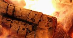 Macro Monday - Backlight (thomaskmoore72) Tags: canon macro fire light outdoors camping bonfire wood