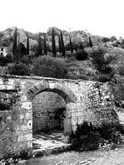 IMG_5366 (maru.hvozdecka) Tags: guca trumpet festival balkan music serbia montenegro krka dubrovnik kotor oldtown unesco gipsy tara bridge fortress church summer waterfalls