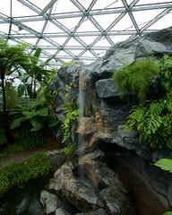 Greenhouse (Frank Fujimoto) Tags: tokyo japan water waterfall architecture