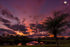 Florida Life: Hammock Creek Morning (Thncher Photography) Tags: sony a7r2 sonya7r2 ilce7rm2 zeissfe1635mmf4zaoss fx fullframe scenic landscape waterscape nature outdoors sky clouds colors reflections shadows silhouettes sunrise tropical palmtrees palmcity stuart florida southeastfloridamartin county