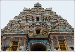 4809 - Thirumudukundram  திருமுதுகுன்றம் (Vridhachalam)  07 (chandrasekaran a 40 lakhs views Thanks to all) Tags: india buildings sony structures hinduism tamilnadu templeart gopurams appar vridhachalam padalpetrasthalam sundarar templesarchitecturesscuptures thevaram sambandhar saivaism thirumuraitemples mudhukundram pazhamalai figuralgopuram
