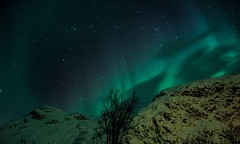 47/365 - The Aurora (Forty-9) Tags: longexposure sky mountains green night canon aurora 365 efs1785mmf456isusm northernlights auroraborealis 2015 project365 efslens 47365 lyngenalps eos60d project3652015 day47 koppangenbrygger