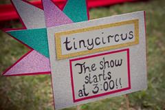 Tangle's tinycircus: photo by Michael Ermilio