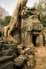 Angkor #43 (doug-craig) Tags: nikon asia cambodia stock culture angkorwat countries temples nationaltreasures