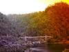 SUSPENSION BRIDGE & WEIR (Rose Frankcombe) Tags: australia tasmania launceston weir firstbasin cataractgorgereserve rosefrankcombe alexandersuspensionbridge
