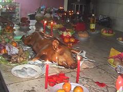 Full Roasted Pig Left for the Buddha