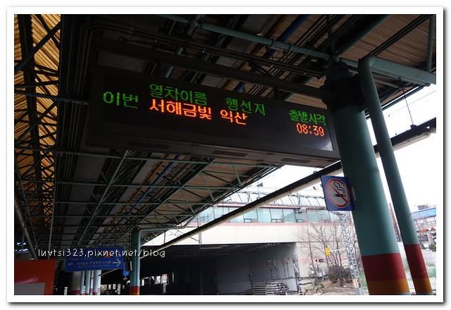 금빛열차32
