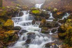 Cascada 2015 #DePaseoConLarri #Flickr  -042 (Jose Asensio Larrinaga (Larri) Larri1276) Tags: water waterfall euskalherria basquecountry cascada 2015 efectoseda orozkobizkaia