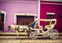 all in a days work, merida, mexico (GBFineArtPhoto) Tags: travel mexico purple nobody merida northamerica fineartphotography traveldestinations colorimage rightsmanaged yucatánpeninsula 0people colourimage withoutpeople editorialimage