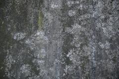Wasserburg, Inn (dscheronimo) Tags: wall germany deutschland bavaria inn nikon grau struktur wasserburg mauer d800 bayer witterung