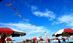 ombrelloni (IVAN 63) Tags: beach playa caorle spiagggiadiponente