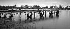 knots & crosses (Farhat M) Tags: blackwhite pier landscape grass water lake trees wind clouds sky canon70d 1635mm leefilter