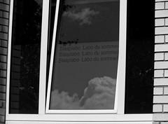 Nos politiques c'est le labo du sommeil - Our politicians, it's the sleep lab (p.franche malade - sick) Tags: brussels blackandwhite cloud blanco monochrome mirror europe belgium belgique noiretblanc political negro bruxelles panasonic revolution dxo nuage brussel zwart wit politique reflexion hdr sleeplab 白黒 belgïe schwarzweis mustavalkoinen revolte inbiancoenero svartochvitt flickrelite أبيضوأسود bestofbw fz200 μαύροκαιάσπρο pascalfranche pfranche skancheli שוואַרץאוןווייַס 黑白чернобелоеизображение labodesommeil