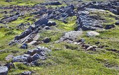 Hveravellir 38 (mariejirousek) Tags: hveravellir geothermal iceland