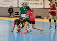 HandballMesterliga-4 (Sommereventyret) Tags: merker sommereventyret periode2 2016 hndball mesterliga finaler premieutdeling