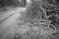 956 of 1096 (Yr 3) Death on the trail. (Hi, I'm Tim Large) Tags: trail trek ride old cheap bike cycle bicycle dump dumped broken fuji fujinon fujifilm x70 bw monochrome timlarge