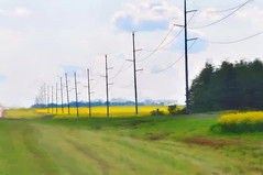 DSC_1716 Corel Painter 300dpi Pastel1 (JanGeisen) Tags: north photograph dakota canola corel digitalmanipulation d90 jangeisen