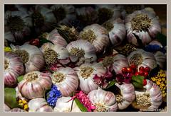 Foire  l'ail et au basilic / Fair with garlic and basil - Tours (christian_lemale) Tags: ail aulx tours foire fair garlic touraine france nikon d7100