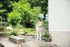 Street Cat. (bgfotologue) Tags: 旅遊 棚屋 2016 500px bgphoto cat cats coast fishingvillage hk heritage hongkong image island landscape lantau mangroove nature oldtaiopolicestation outdoor photo photography policestation saltedfish shrimppaste stilthouses taio tanka venice veniceoftheorient village waterparade bellphoto tourism 中華白海豚 大嶼山 大澳 威尼斯 戶外 攝影 旦家 村 東方威尼斯 橫水道 水上屋 水道 水鄉 港 漁村 白海豚 自然 警署 貓 離島 風景 香港