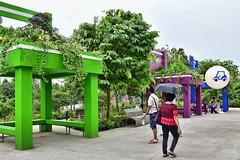 Chairs of the Giants (chooyutshing) Tags: chairsofthegiants installation floraldisplay singaporegardenfestival2016 meadow gardensbythebay baysouth marinabay singapore