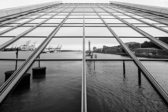 Docklands symmetric Lineflection (frank_w_aus_l) Tags: hamburg monochrome people hafen port nikon d810 architecture reflection silhouette bw noiretblanc lines docklands spiegelung perspective mirror deutschland de pce24 tilt wow