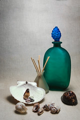 Still life with a green bottle (Alexander Pugatschewski) Tags: stilllife green bottle sinks tobacco background fabric texture structure shell snail scallop shadow light bunch grape coarse glass mat vase stick cowrie