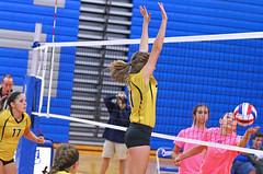 IMG_10416 (SJH Foto) Tags: girls volleyball high school lampeterstrasburg lampeter strasburg solanco team tween teen east teenager varsity action shot